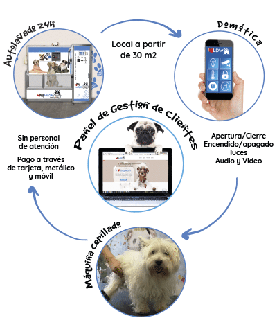 I Love Dog Wash es un negocio innovador y en pleno crecimiento